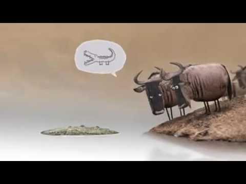 Video New Odia cartoon video download in MP3, 3GP, MP4, WEBM, AVI, FLV January 2017