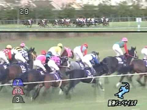 2008年 阪神ジュベナイルF ブエナビスタ
