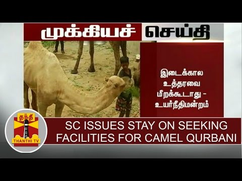 Breaking-News--Supreme-Court-issues-stay-on-seeking-facilities-for-Camel-Qurbani