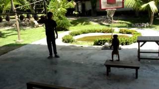 Monkey Amazing Jump Monkey School, Koh Lanta, Thailand