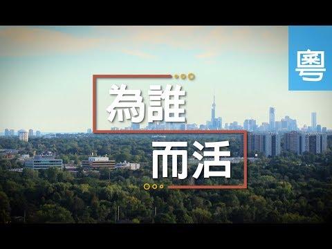 電視節目 TV1478 為誰而活 (HD粵語) (多倫多系列)