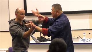 Deep Internal Kungfu of GM Sam Chin - Hatfield University Lecture (Flying Monk Ep. 25)
