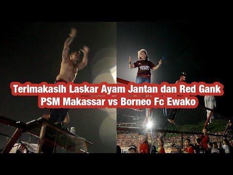 Terimakasih Laskar Ayam Jantan dan Red Gank , PSM Makassar Vs BOrneo Fc Ewako