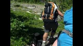 Video Grizzly Bear Encounter in Glacier National Park, MT MP3, 3GP, MP4, WEBM, AVI, FLV Agustus 2017