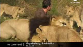 Hugs with Lions