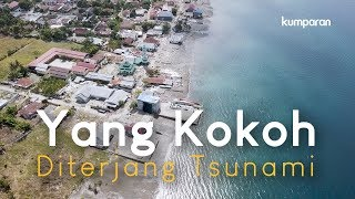 Video Yang Kokoh Diterjang Tsunami | Special Content MP3, 3GP, MP4, WEBM, AVI, FLV Oktober 2018