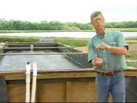 Inland Shrimp Farming in Alabama-Part 3 of 9