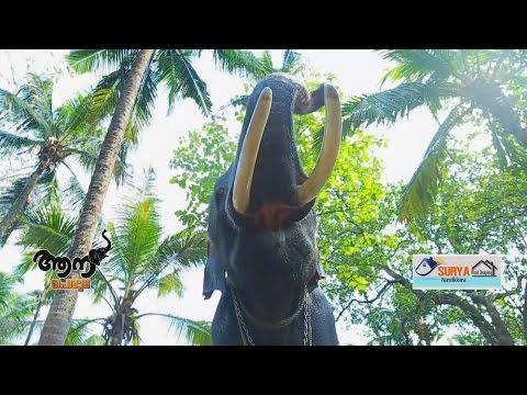 Video AKKAVILA   VISHNUNARAYANAN ( AANA PERUMA  EPISODE - 07 ) download in MP3, 3GP, MP4, WEBM, AVI, FLV January 2017