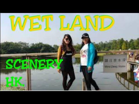 #Scenery HONGKONG SCENERY l WET LAND #PART2