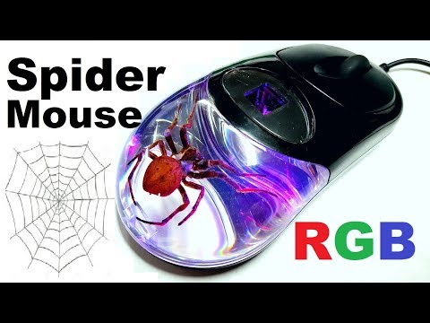 Random Reviews Ep. 6: $18 Spider Mouse With RGB LED's