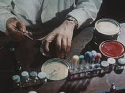 peniciline - A government produced film about the discovery of penicillin by Sir Alexander Fleming, and the continuing development of its use as an antibiotic by Howard F...