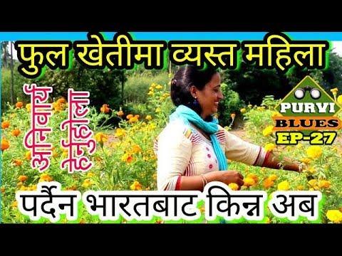 (नेपाली चेलीद्वारा सयपत्री खेती । T.V. को जागिर छोडेर माटोमा रमाउने महिला र Software बनाउने श्रीमान । - Dur...)