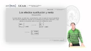 Microeconomía I - La Teoría De La Demanda (8) - Alfonso Rosa García