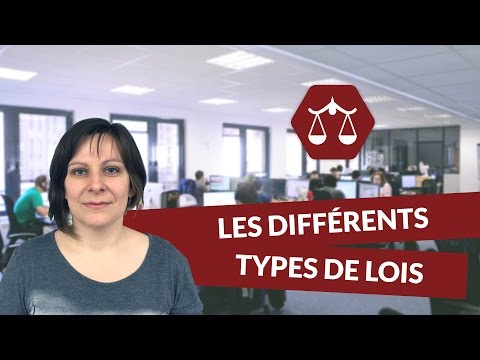 Les différents types de lois - Droit - digiSchool