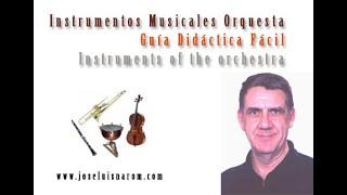 Download Lagu Instrumentos Musicales Orquesta - Guía Didáctica Fácil Mp3