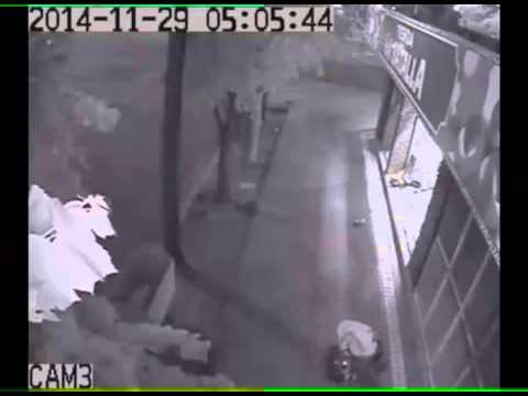 El video del robo captado por la cámara de seguridad