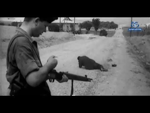 الذكرى الـ 70 لمجازر 8 ماي 1945
