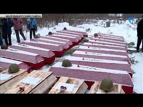 В Маловишерском районе предали земле останки 163 защитников отечества, павших в годы Великой Отечественной войны