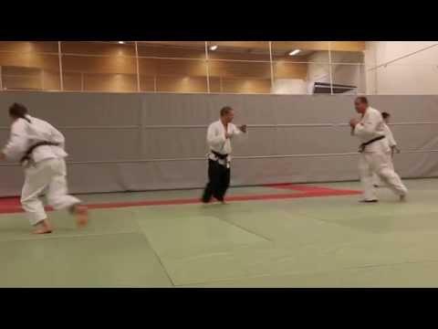Hokutoryu jujutsu training clips – randori