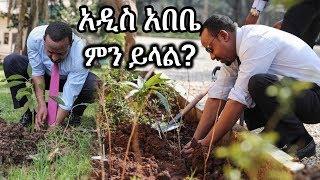 Ethiopia: ስለ ዶ/ር አብይ አህመድ ችግኝ ተከላና ጽዳት አዲስ አበቤ ምን ይላል? Dr Abiy Ahmed