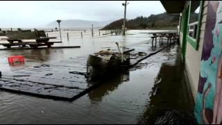 December 2015 Flooding of Nehalem River @ Kelly's Brighton Marina Film, edit, music: Brian Yelle River otter commentary by Rico Crab Wranglers: Stella ...