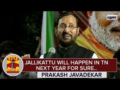 Jallikattu-will-happen-next-year-for-Sure--Prakash-Javadekar-Thanthi-TV