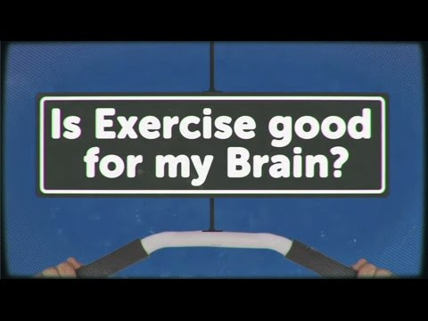 Exercise - Head Squeeze has partnered with Hello Brain to bring you a series of videos all about that most mystifying of organs, the Brain. Your brain gets a shot of oxygen when you exercise. This helps...