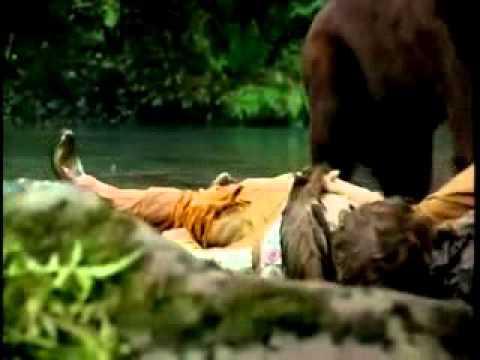 Forest Warrior Fan Trailer