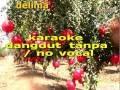 DELIMA DANGDUT KARAOKE TANPA  VOCAL