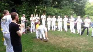 Capoeira Dans