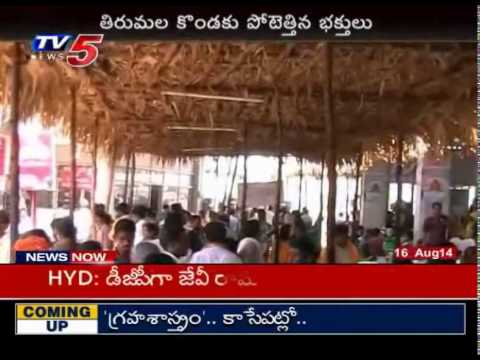 Hundreds of Marriages in Tirumala | Crowded With Huge Pilgrims : TV5 News