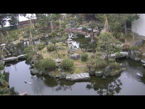 あわら温泉 翌日の宿へ移動 2019年冬旅福井 第031話
