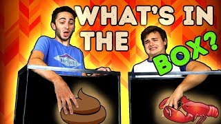 WHAT'S IN THE BOX CHALLENGE! (Real Life Challenges)