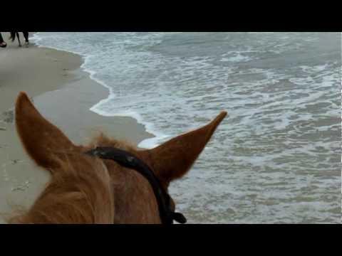 Horseback Ride on the Beach.mpg