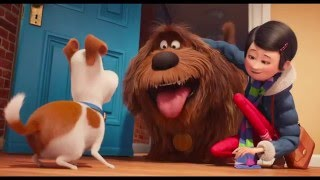 Nonton  The Secret Life Of Pets   2016  Official Trailer  3 Film Subtitle Indonesia Streaming Movie Download