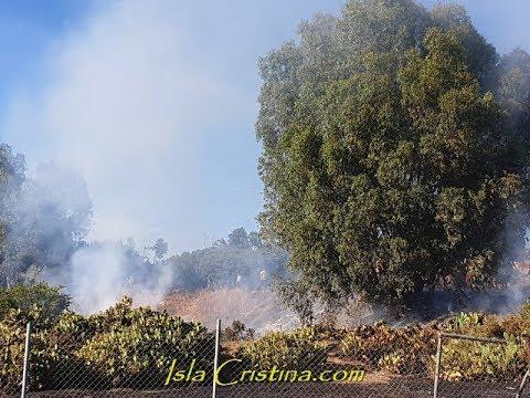 Incendio en el pinar de Pozo del Camino