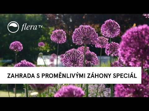 Zahrada s proměnlivými záhony Speciál Když kvetou česneky  | Inspirativní zahrada | Flera TV