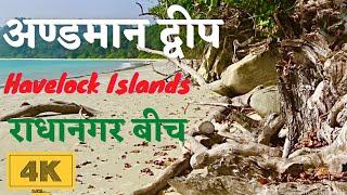 Andaman and Nicobar Islan India  city pictures gallery : India's Best Radhanagar Beach Havelock Islands in 4K - Andaman and Nicobar Islands
