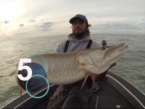 i migliori 5 video di pesca
