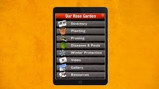 Rose Garden Care YouTube video