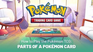 How to Play the Pokémon TCG: Parts of a Pokémon Card by The Official Pokémon Channel