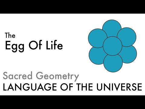 The Egg Of Life - Sacred Geometry