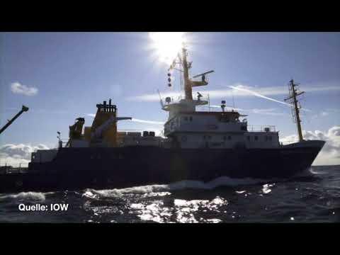 Ostseeforscher Prof. Dr. Ulrich Bathmann: Die Erde is ...