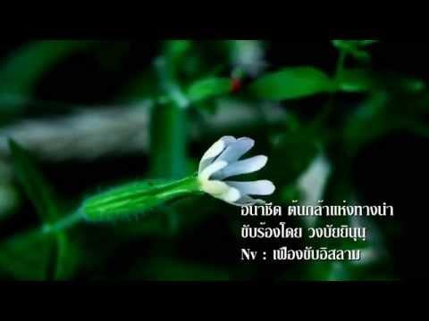 อนาชีด : ต้นกล้าแห่งทางนำ (ซับไทย) [Full Version HD]