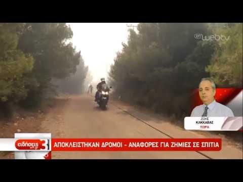Πυρκαγιά στην Σαρωνίδα – Εκκενώνονται σπίτια | 13/09/2019 | ΕΡΤ