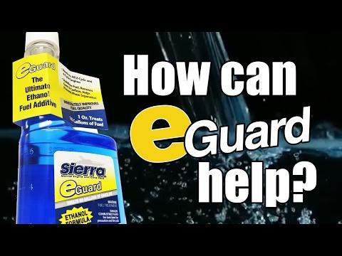 Sierra eGuard Fuel Stabilizer