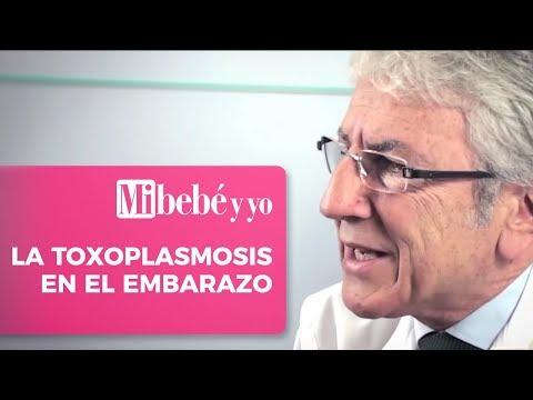La toxoplasmosis en el embarazo