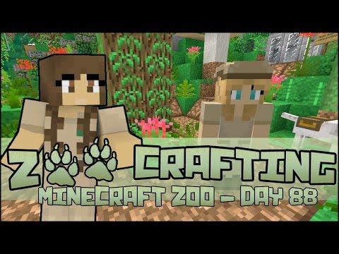 Keeper of the Hummingbirds! 🐘 Zoo Crafting: Season 2 - Episode #88
