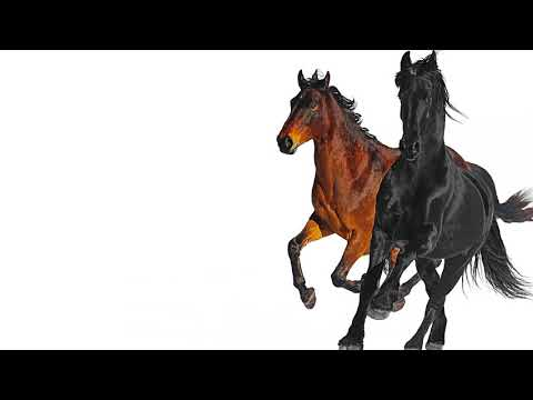 Lil Nas X - Old Town Road (feat. Billy Ray Cyrus) [Remix]