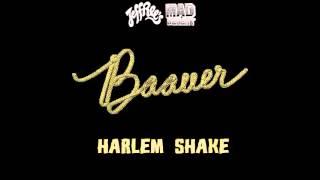 Baauer The Harlem Shake Original HQ Song FREE